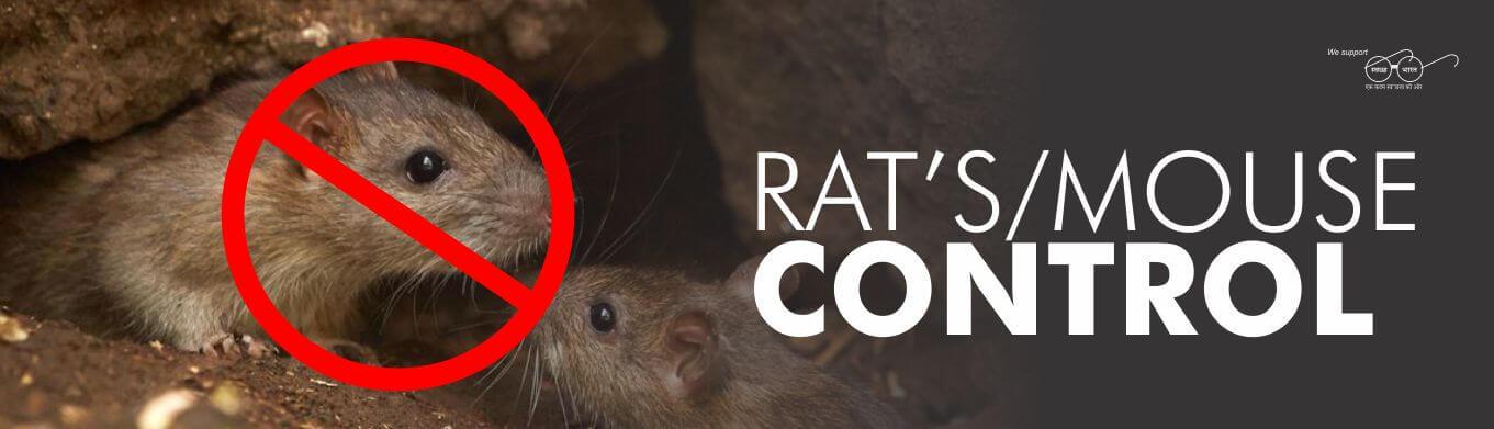 RAT'S MOUSE PEST CONTROL SERVICE