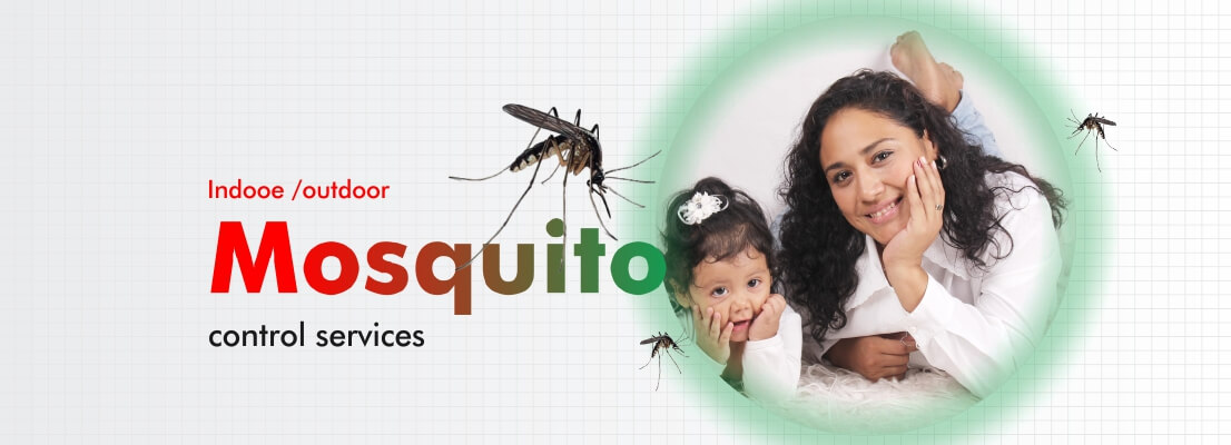 mosquito control service banner