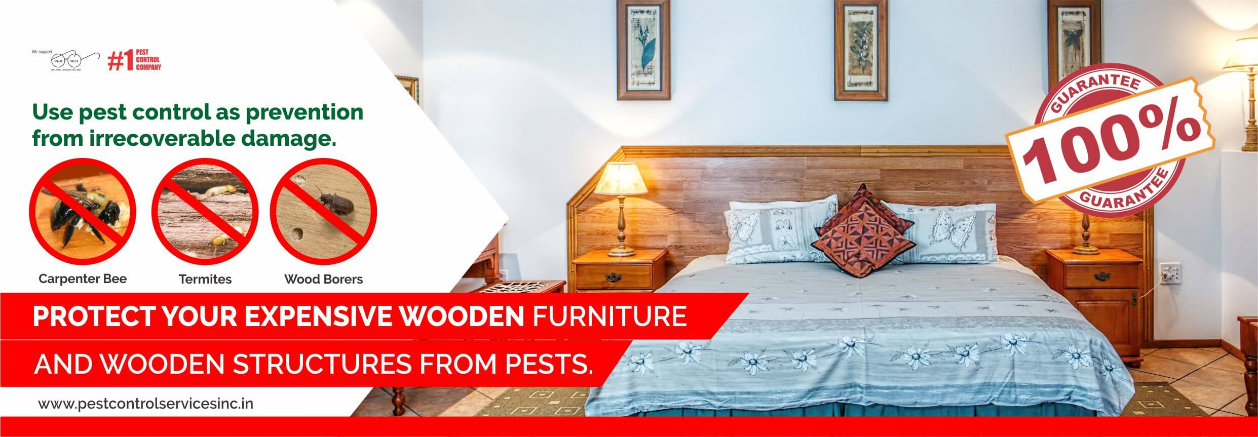 termite, wood borer pest contorl