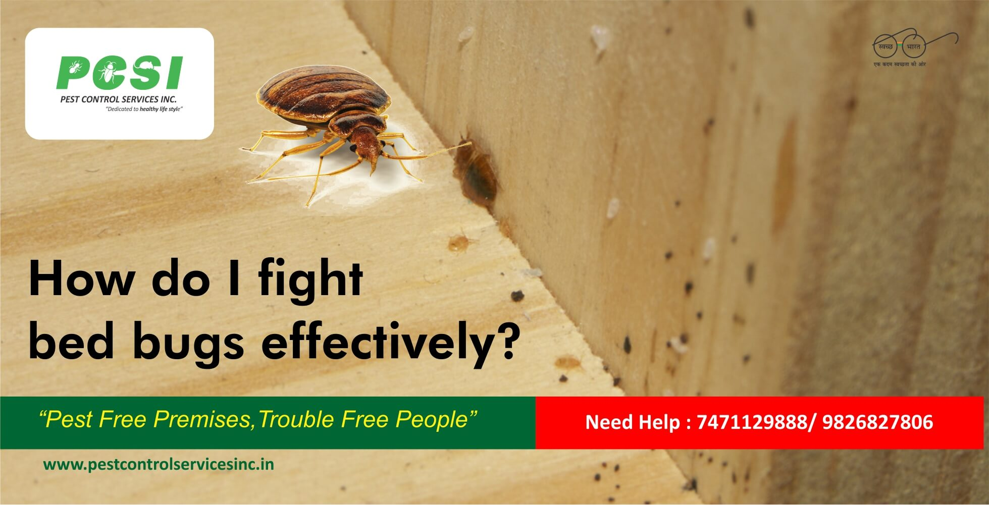 fight bed bug effectively