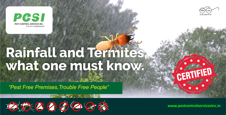 Rainfall and Termites