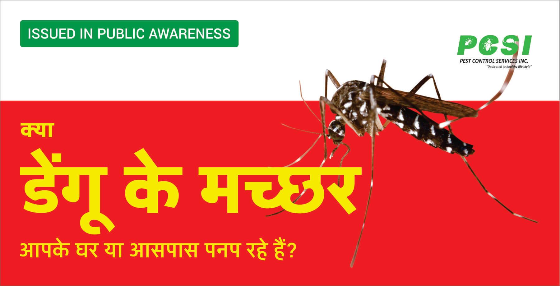 zika mosquito control service