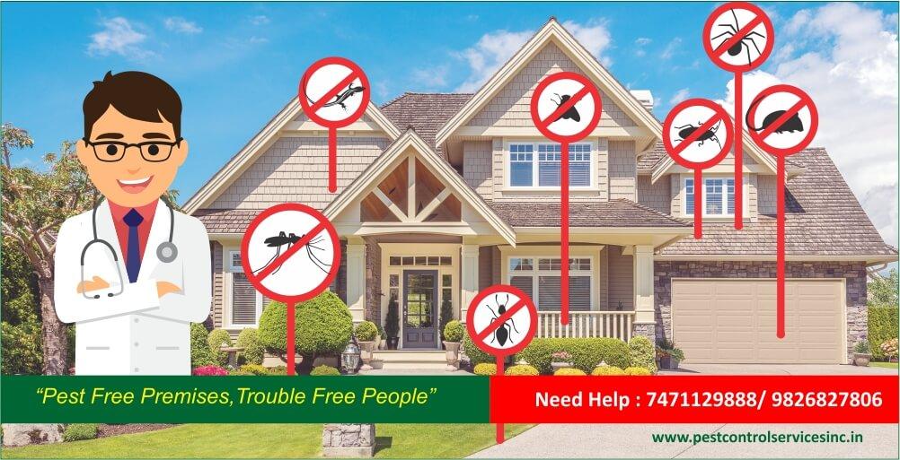 pest control really necessary?
