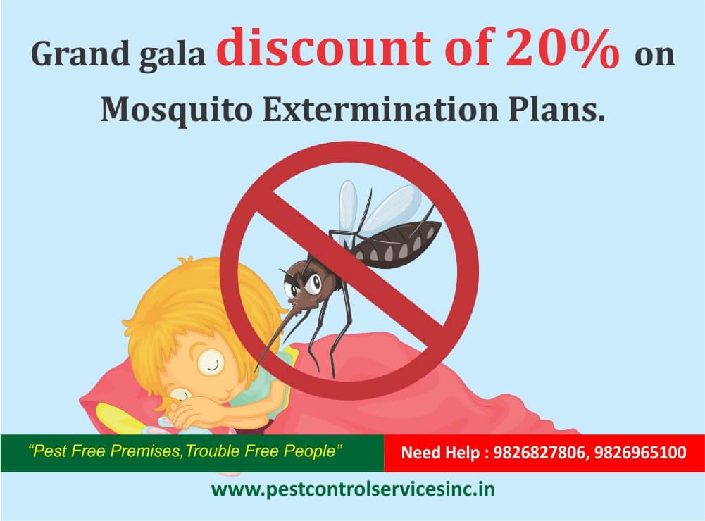 mosquito pest control in indore.